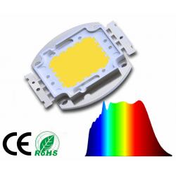 LED COB 100W LUCE...